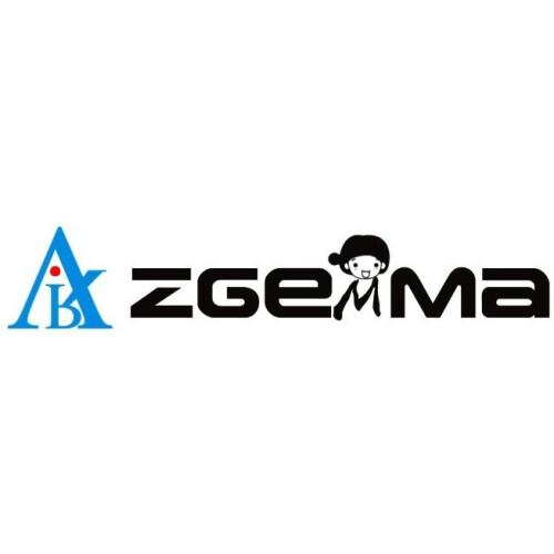 ZGEMMA-STAR
